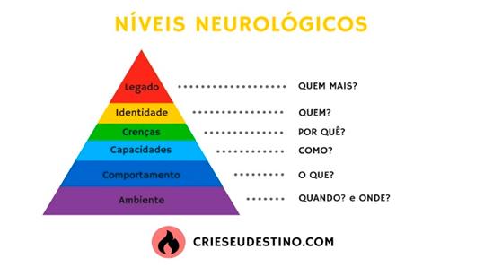 Figura1: Níveis neurológicos